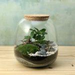 terrarium handmade
